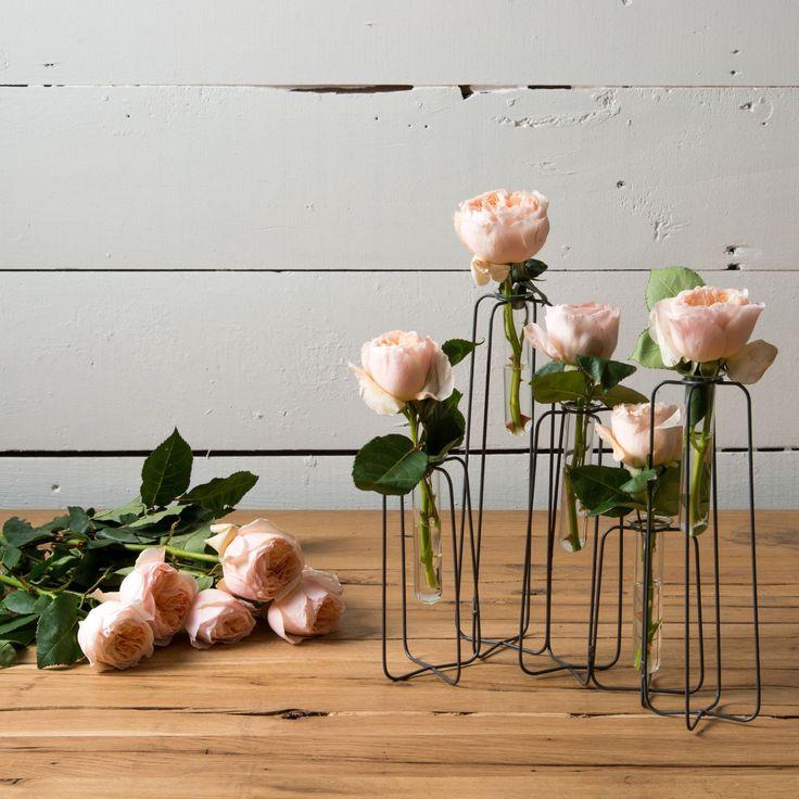 25 Best Ideas About Joanna Gaines Kitchen On Pinterest: Best 25+ Joanna Gaines Style Ideas On Pinterest