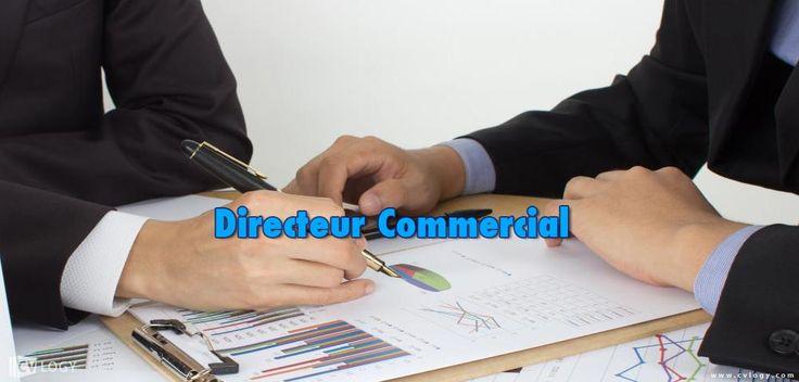 #Emploi un #Directeur_Commercial (#senior) en #transport_international et #transit------>
