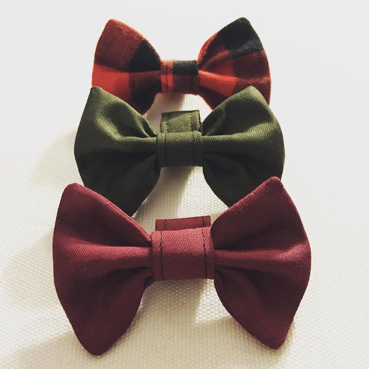 dog bow ties!