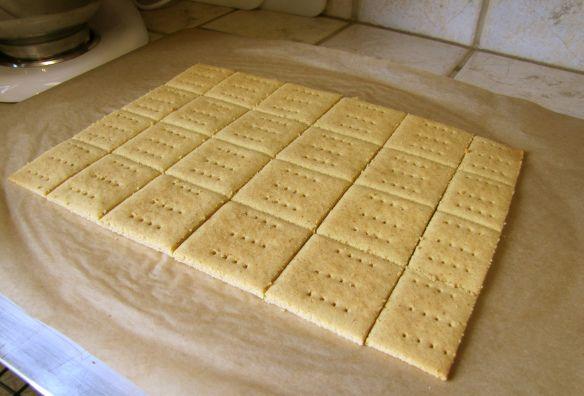 Gluten free, grain free honey grahm crackers.