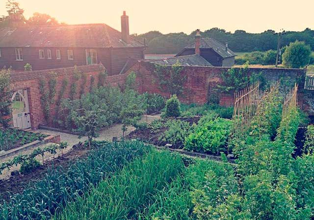 Cosmo checks in: The Pig, Brockenhurst #Travel #TravelTuesday #StaycationEdible Gardens, Cosmo Check, Brockenhurst Travel, Gardens Heavens, Vegetables Gardens, Kitchens Gardens, Traveltuesday Staycation, Amazing Vegetables, Gardens Potager