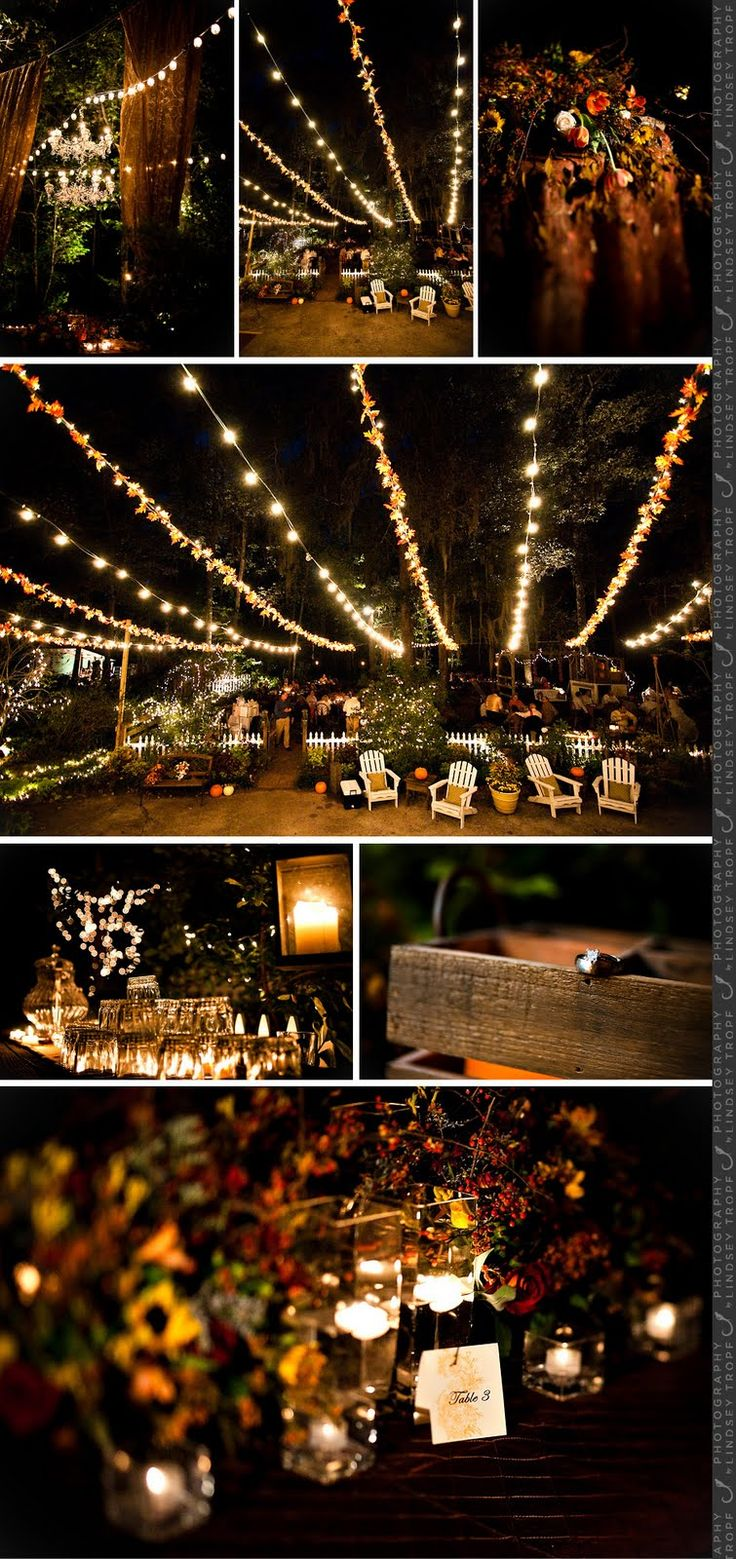 Marry You Me: Real Wedding: Backyard Fall Wedding,Beautiful Of Wedding Lighting Outdoor,The outdoor wedding lights look like fairy ! http://www.amazon.com/lederTEK-Multi-color-Decorative-Christmas-Weddings/dp/B00MVN92XU/ref=sr_1_6?ie=UTF8&qid=1439438351&sr=8-6&keywords=ledertek