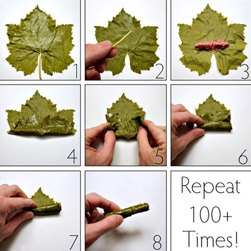'this is how I roll'! • middle eastern stuffed vine leaves recipe and great instructions