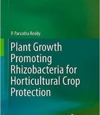 Plant Growth Promoting Rhizobacteria For Horticultural Crop Protection PDF