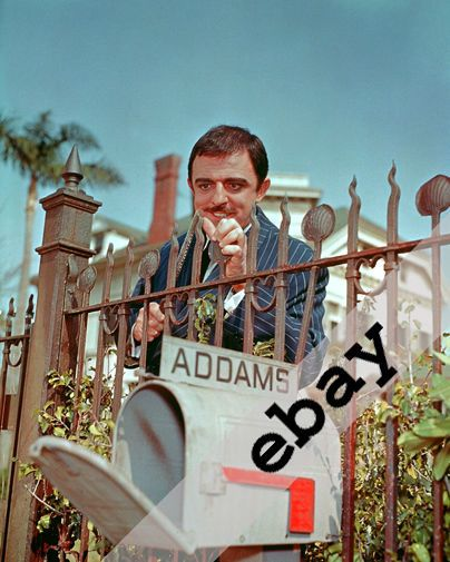 The Addams Family TV show John Astin as Gomez Addams 8X10 PHOTO #1900