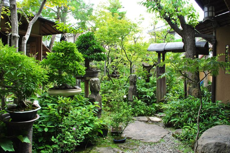 bonsai a microcosm of the japanese The bonsai art of japan bjorvala bonsai studio owen's bonsai unearthed fujikawa san was a gracious host is like a microcosm of what kyoto is.