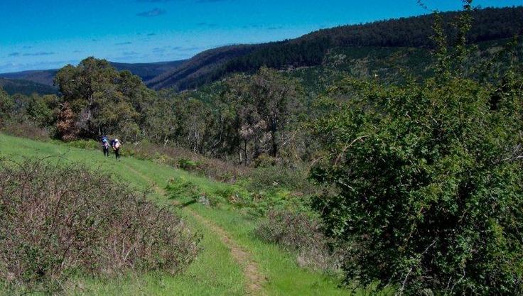 Walkers near Blackwood Campsite