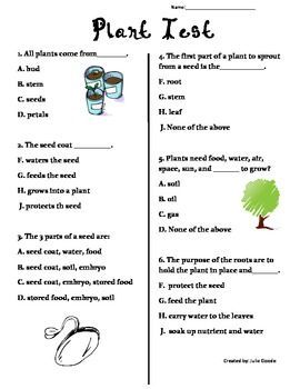 Plant Test: 2nd Grade SOL