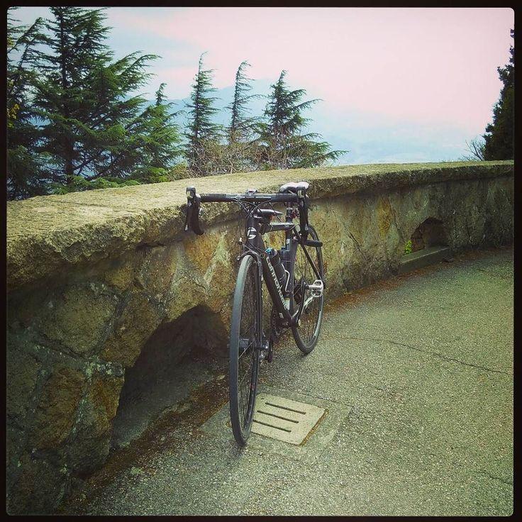 Monte della Madonna #cycletherapy #Caadotto #senzabicinonsostare #allenamento #training #ciclismo #cycling #bici #bike #velo #bicicletta #bicycle #pushbike #cicloturismo #cycletourisme #pedalaognigiorno #pedalaognitanto #usalabici #bikelife #roadbike #bdc #amore #love #passione #passion #primavera #spring #cycle #cycletouring #collieuganei