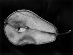 Manfred Paul Aufgeschnittene Birne, 1996 Silbergelatineabzug auf Barytpapier © Manfred Paul, Berlin