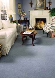 Pocka Dola is the best carpet cleaning company in Melbourne. Providing awesome service to awesome people. Call us now on (03) 9111 5619 for all your carpet cleaning needs. You'll be glad you did!