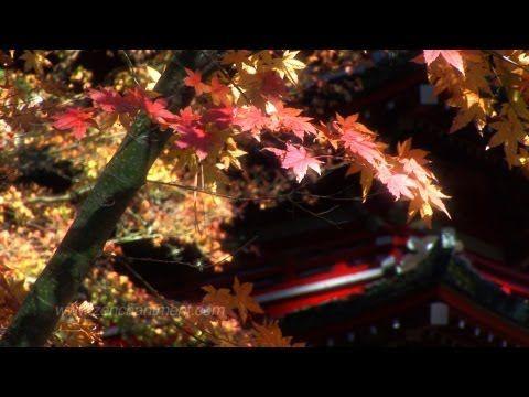 Zen Garden - Autumn Relaxation & Meditation (Full Length)