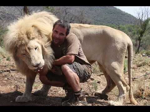 Love and Relation with Wild Animals - Full Documentary