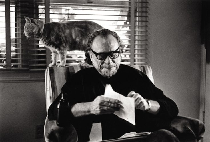 """Charles Bukowski wrote about cats: """"They walk with a surprising dignity, can sleep twenty hours a day, without doubt and without remorse: these creatures are my teachers."""""""