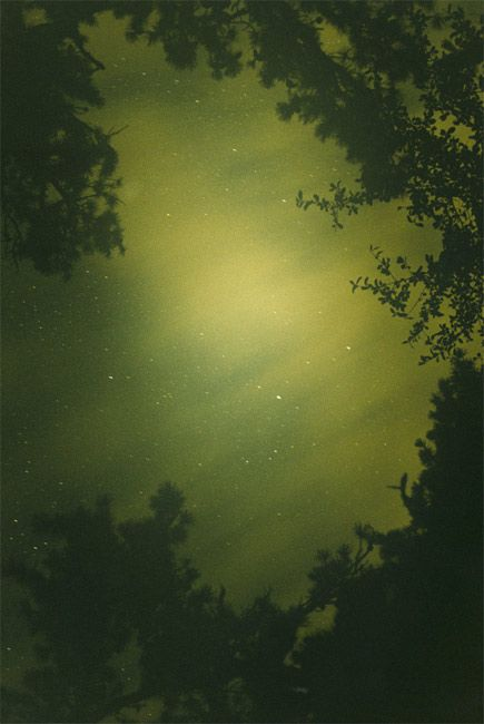 Night Sky (Green),  2009