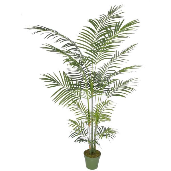 artificial areca palm tree floor plant in planter reviews 140 liked on polyvore
