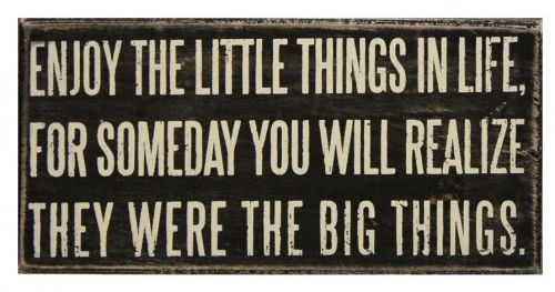 The little thingsWords Of Wisdom, Life Quotes, Little Things, Remember This, Inspiration, Big Things, True Words, So True, True Stories
