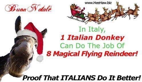 Dominick the Italian Christmas Donkey | La bellezza di tutto ...