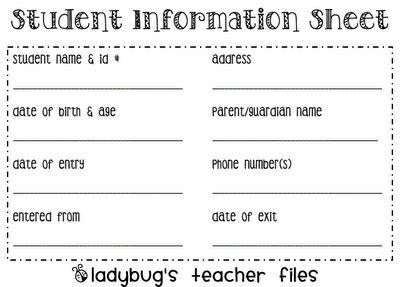Ladybug's Teacher Files: Student Information Sheet {printable}