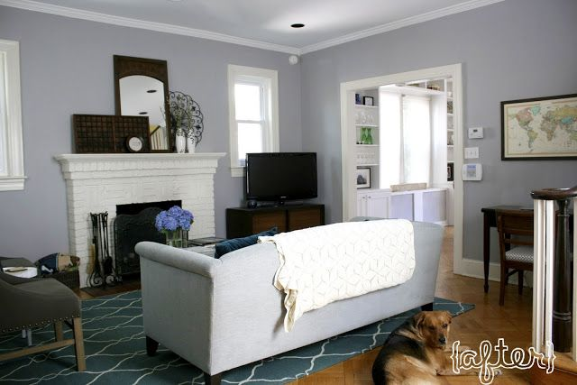 Behr porpoise grey grey wall colour ideas pinterest for Home room color guide