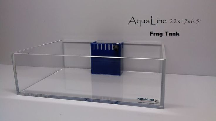 Reef Aquarium Acrylic Frag Tank For SPS Corals #aquariums #supplies #fish #corals #tanks #tank #aquarium #acrylic #frag #reef