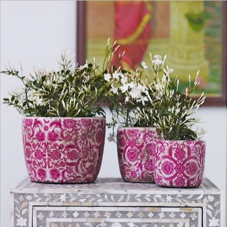 Vintaged Rose Plant Pots eclectic indoor pots and planters