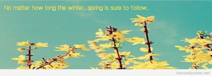 Spring Accommodation Facebook Covers: 16 Best Ideas About FB Covers
