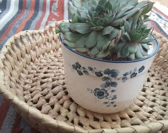 Arklow Pottery Small Plant Pot // Made in Ireland // Succulent