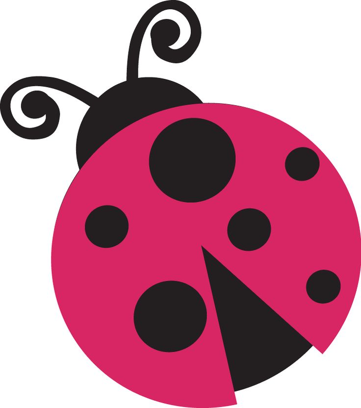 pink ladybug vector wwwpixsharkcom images galleries