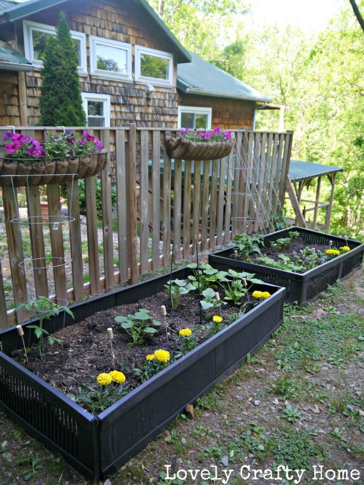 Plastic shutters from the ReStore for raised garden beds!