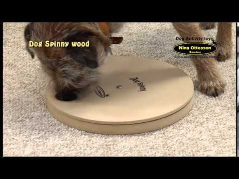DogSpinny Juguete Interactivo para Perro - Mascositas