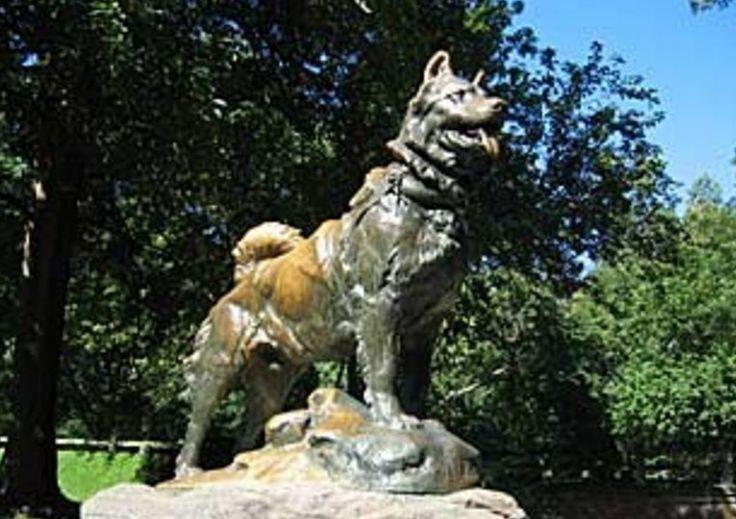 Hoy es el día nacional del perro en honor a Chonino, un perro policía que falleció en 1983. Sus restos descansan en el Círculo de la Policía Federal.