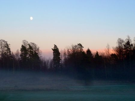 Moonshine and mist Photo by Carl Christian Glosemeyer Andersen — National Geographic Your Shot