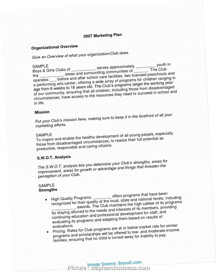 How To Write Business Plan For Nonprofit N Sample Non