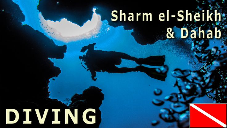 Our photocast: Diving: Sharm El Sheikh i Dahab (EGYPT) http://youtu.be/LmYLCDEnPeE {Nurkowanie: Sharm El Sheikh i Dahab (EGIPT)} http://youtu.be/LmYLCDEnPeE #Egypt #Egipt #diving #Sharm #Sharm #el-Sheikh #Dahab #Canyon #Blue #Hole