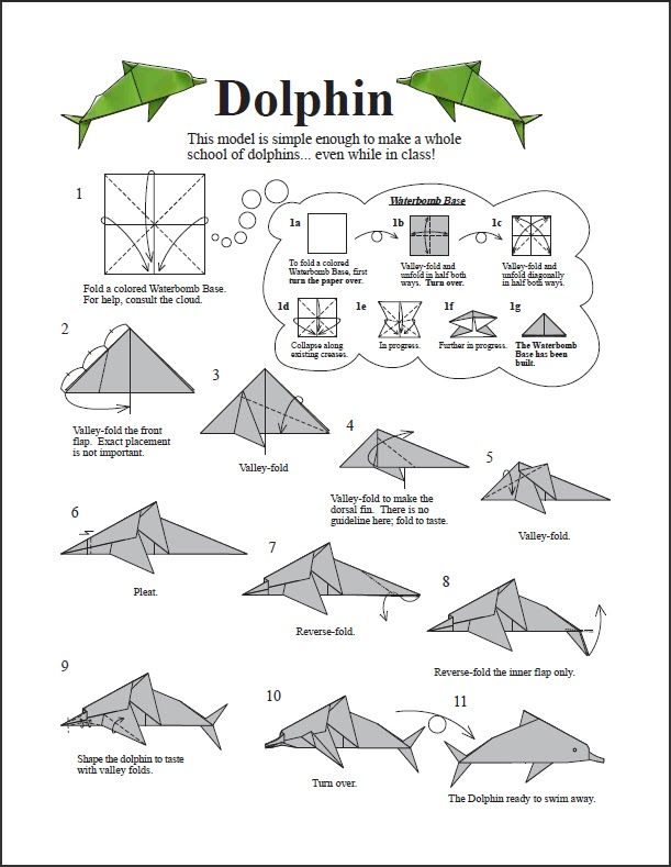 Asociacion Mexicana de Papiroflexia: Delfines