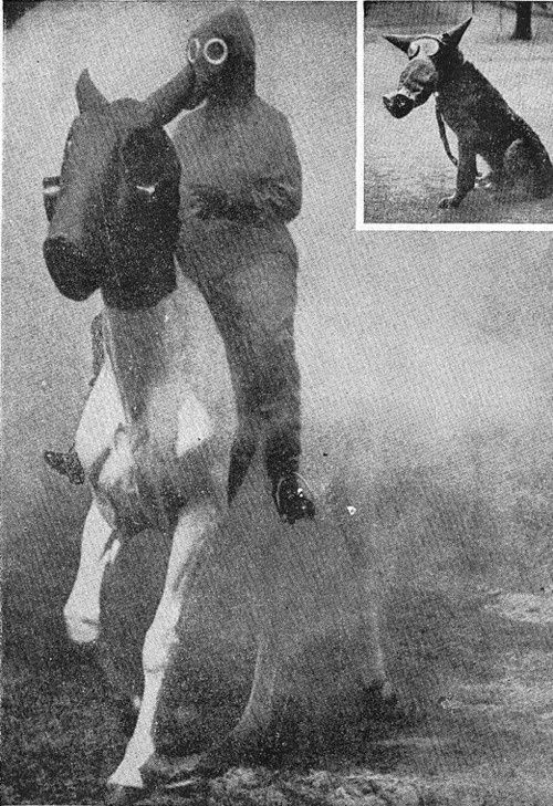 Gas masks c. WW1 as displayed on man, horse and dog.