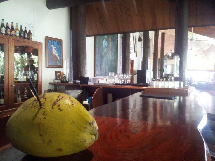 Coconut anyone? Fresh coconut at the bar from Thala plantation #thalabeachlodge