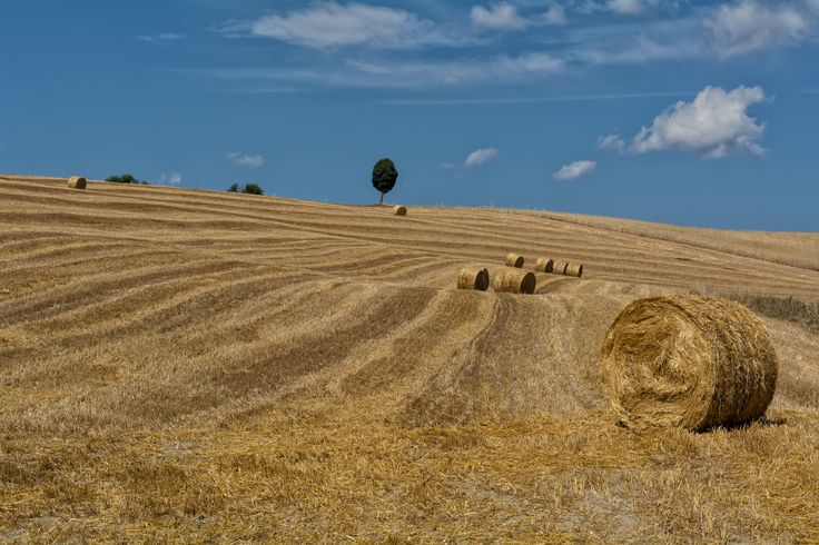 Countryside by Gionata Tammaro on 500px