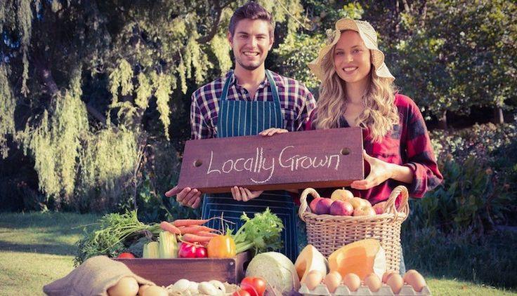 Agriculteurs «bio» : moins riches, mais beaucoup plus heureux selon une étude