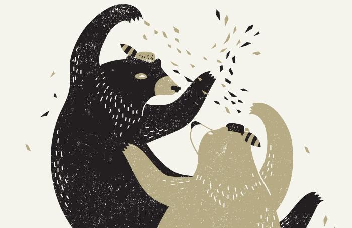 Bears fighting/fur flying