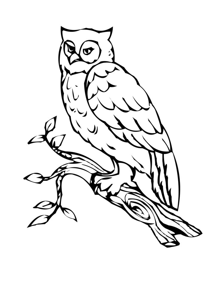coloring pages for kids owls | Free Printable Owl Coloring Pages For Kids | Owl coloring ...