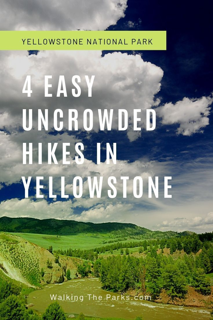 Skip the Mobs: 4 Easy Uncrowded Yellowstone Hikes