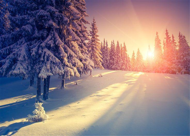 Amazon.com : 5x7ft Sunset Backdrop Photography Frozen Snow Winter Photographic Background No Wrinkles for Children Photo Studtio : Camera & Photo