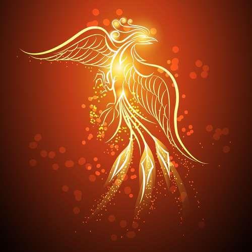 Collection of vector image of phoenix bird fire revival flight 25 EPS