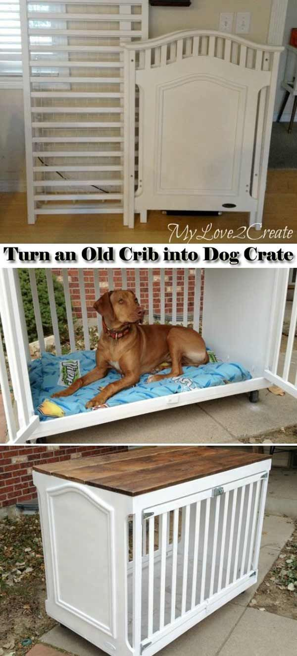 Pets Bring Too Much Fun To Our Life And Have Become A Very Important Member Of Our Family So You Should Be Kind To Diy Dog Stuff Dog Crate Diy Stuffed
