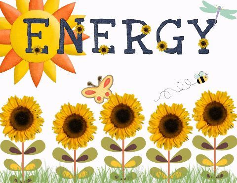 Energy Conservation Graphic Organizer