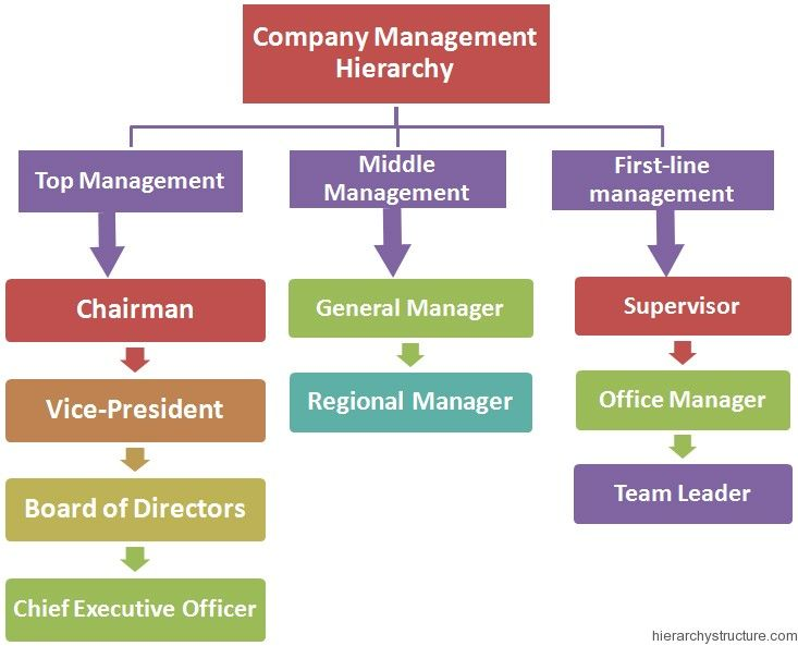 Company management hierarchy management hierarchy for Job salon distribution