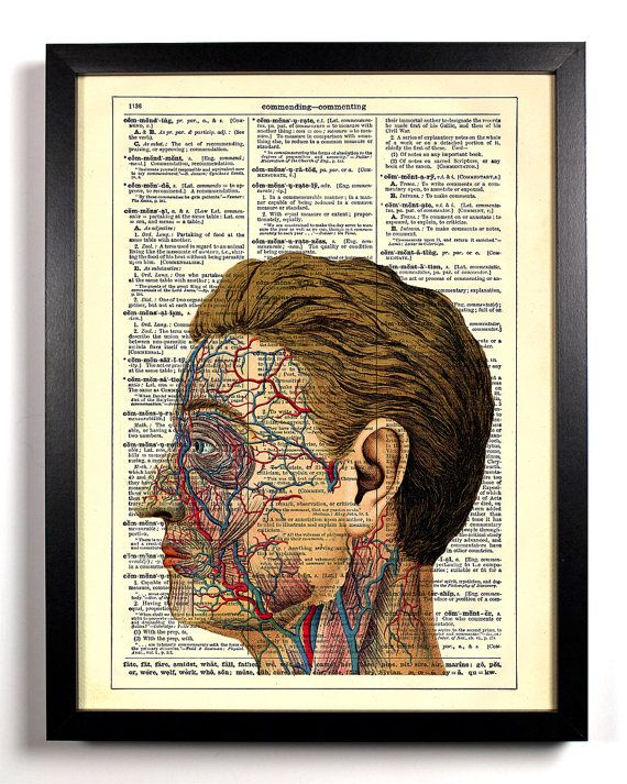 Anatomy Of The Face Upcycled Dictionary Art Vintage Book Print Recycled Vintage Dictionary Page Buy 2 Get 1 FREE. $6.99, via Etsy.