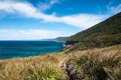 Walking the grasslands with magnificent views of the coastline - Otford to Figure 8 Pools Circuit, Royal National Park